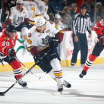 Chicago Wolves Hockey Game Deals!