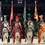 Medieval Times Chicago Discount!