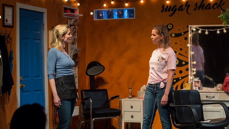 American Beauty Shop Chicago Dramatists
