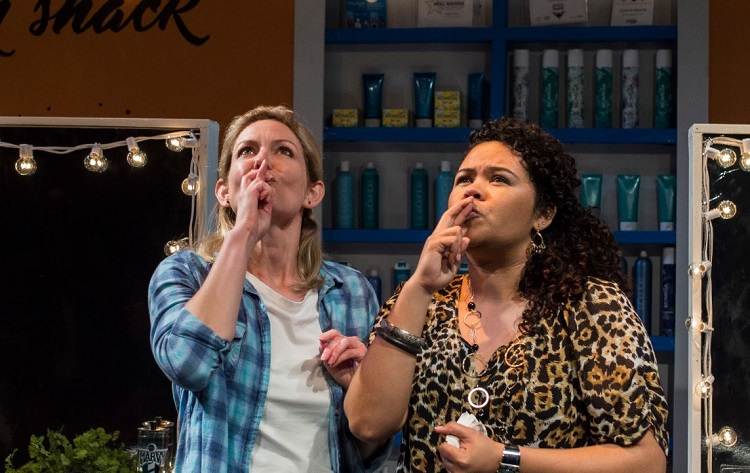 American Beauty Shop Review Chicago Dramatists